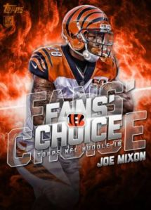 2018 huddle fans choice
